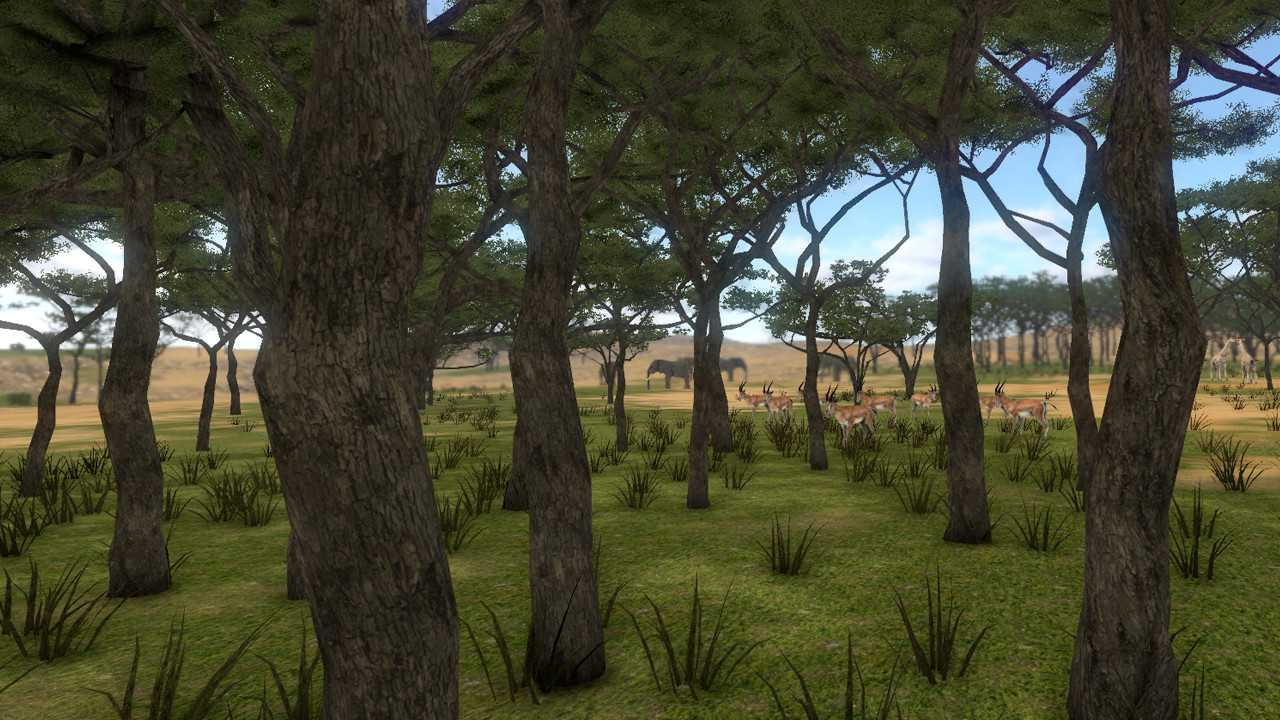 SAVANNA SHOT VR