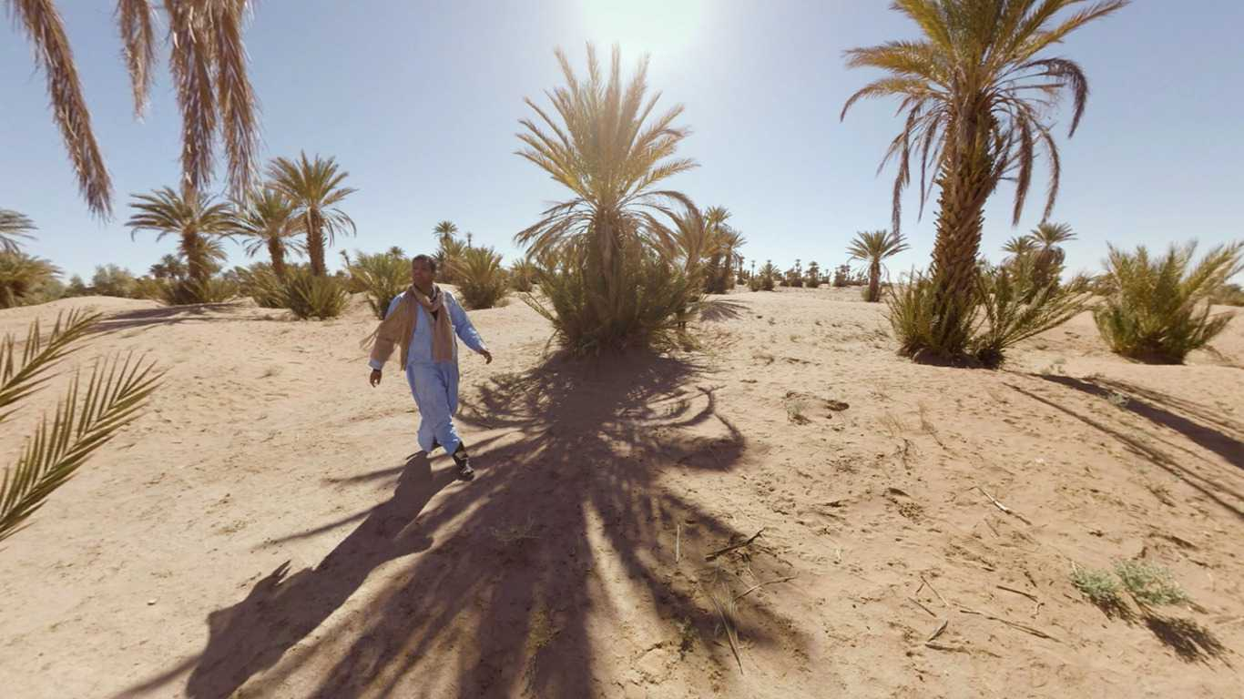 The Disappearing Oasis