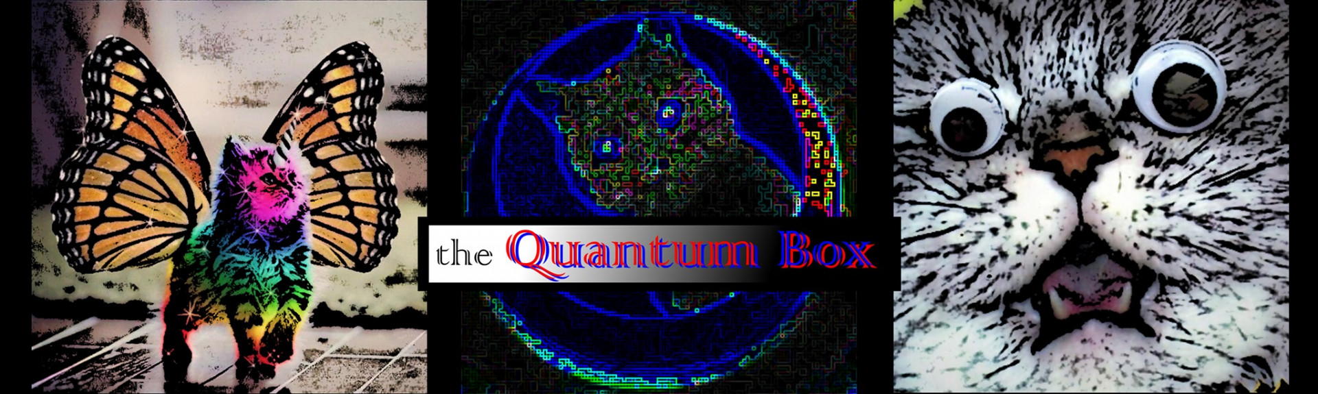 the Quantum Box