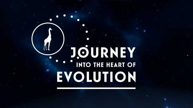 Journey into the heart of Evolution